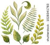 beautiful abstract fresh green... | Shutterstock . vector #1028341783