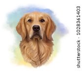 Illustration Of A Golden...