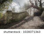 surreal  low contrast image of...   Shutterstock . vector #1028371363