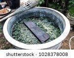 how to dye indigo in sakon... | Shutterstock . vector #1028378008