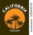 california sunset t shirt... | Shutterstock .eps vector #1028400760