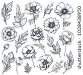 vector collection of hand drawn ... | Shutterstock .eps vector #1028438950