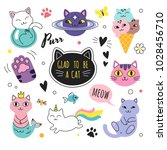 funny doodle cats collection.... | Shutterstock .eps vector #1028456710
