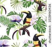 toucan  strelitzia and orchids. ...   Shutterstock .eps vector #1028460436