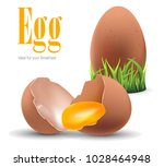 eggs isolated on 3d white... | Shutterstock .eps vector #1028464948