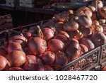 red onions  allium cepa  aka...