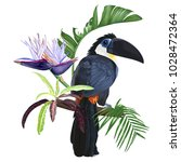 large toucan sitting on a...   Shutterstock .eps vector #1028472364