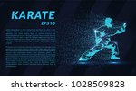 karate of particles. the karate ... | Shutterstock .eps vector #1028509828