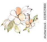 abstract flower watercolor... | Shutterstock . vector #1028525800