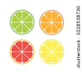 vector citrus slices | Shutterstock .eps vector #1028538730
