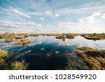 summer landscape. swamp  marsh  ...   Shutterstock . vector #1028549920