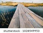 summer landscape. swamp  marsh  ...   Shutterstock . vector #1028549953