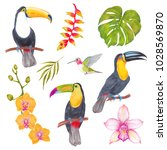 watercolor marker tropical... | Shutterstock . vector #1028569870