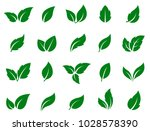 set of isolated green leaves... | Shutterstock . vector #1028578390