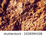 stone texture abstract  | Shutterstock . vector #1028584108