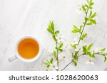 cup of  tea and  branches of... | Shutterstock . vector #1028620063