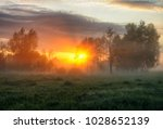 spring morning. a misty dawn in ... | Shutterstock . vector #1028652139