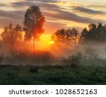spring morning. a misty dawn in ... | Shutterstock . vector #1028652163