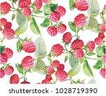 goji berries guarana seamless... | Shutterstock .eps vector #1028719390
