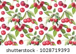 goji berries guarana seamless... | Shutterstock .eps vector #1028719393