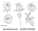 rose vector set by hand drawing   Shutterstock .eps vector #1028735560