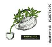 green tea. engraved style... | Shutterstock .eps vector #1028756050
