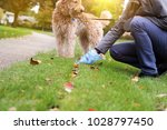 man  picking up   cleaning up... | Shutterstock . vector #1028797450