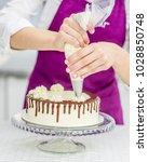 close up woman s hand... | Shutterstock . vector #1028850748