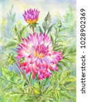 watercolor dahlia  flowering... | Shutterstock . vector #1028902369