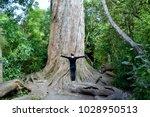 Peel Forest  New Zealand   11...
