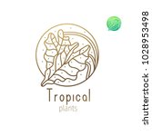 tropical plant logo. vector... | Shutterstock .eps vector #1028953498