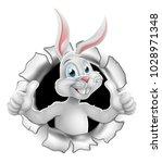 cartoon easter bunny rabbit...   Shutterstock .eps vector #1028971348