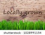 bright wooden background  gras  ... | Shutterstock . vector #1028991154