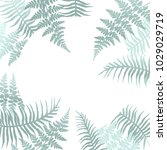 realistic fern frond frame... | Shutterstock .eps vector #1029029719