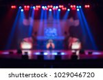 blurred background of the... | Shutterstock . vector #1029046720
