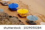umbrellas with sunbeds ... | Shutterstock . vector #1029050284