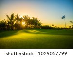golf course in the tropical... | Shutterstock . vector #1029057799