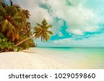 tropical sand beach with palm... | Shutterstock . vector #1029059860