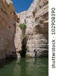 ein avdat canyon   israel | Shutterstock . vector #102908390