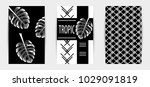 trendy tropic pattern covers... | Shutterstock .eps vector #1029091819