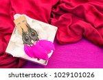 festive packaging gift boxes... | Shutterstock . vector #1029101026