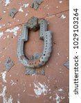 ancient engraved wooden  doors... | Shutterstock . vector #1029103264