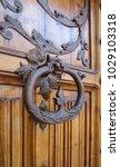 ancient engraved wooden  doors... | Shutterstock . vector #1029103318