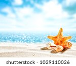 shell on sand and free space... | Shutterstock . vector #1029110026