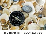 navigational compass on sandy... | Shutterstock . vector #1029116713