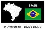 map and national flag of brazil ... | Shutterstock .eps vector #1029118339