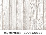 texture of wooden panels.... | Shutterstock .eps vector #1029120136