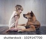 a wonderful little girl and a... | Shutterstock . vector #1029147700