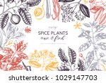 graphic design with hand drawn... | Shutterstock . vector #1029147703