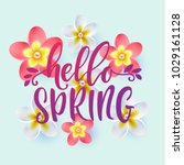hello spring hand drawn... | Shutterstock .eps vector #1029161128